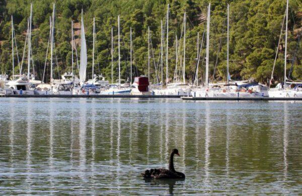 skradin boat tour