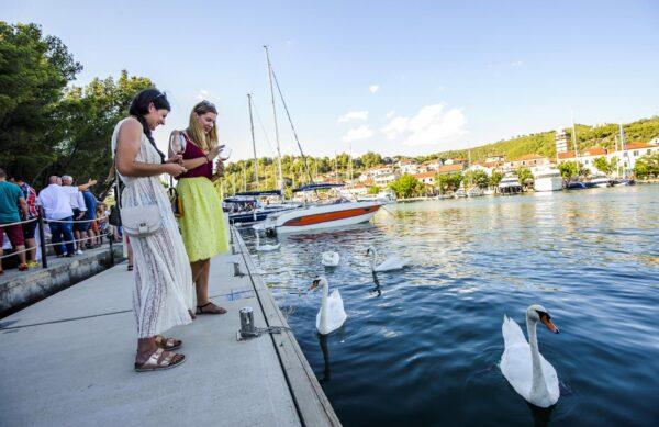 boat krka tour